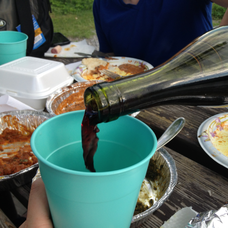 We also ate huge servings of takeout Indian. Perfect picnic food.