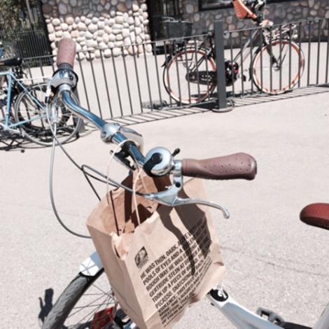 zoo-bike-lunch