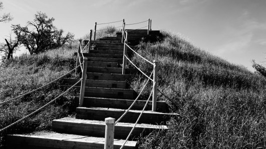 The big steps up to the top of the Rise.